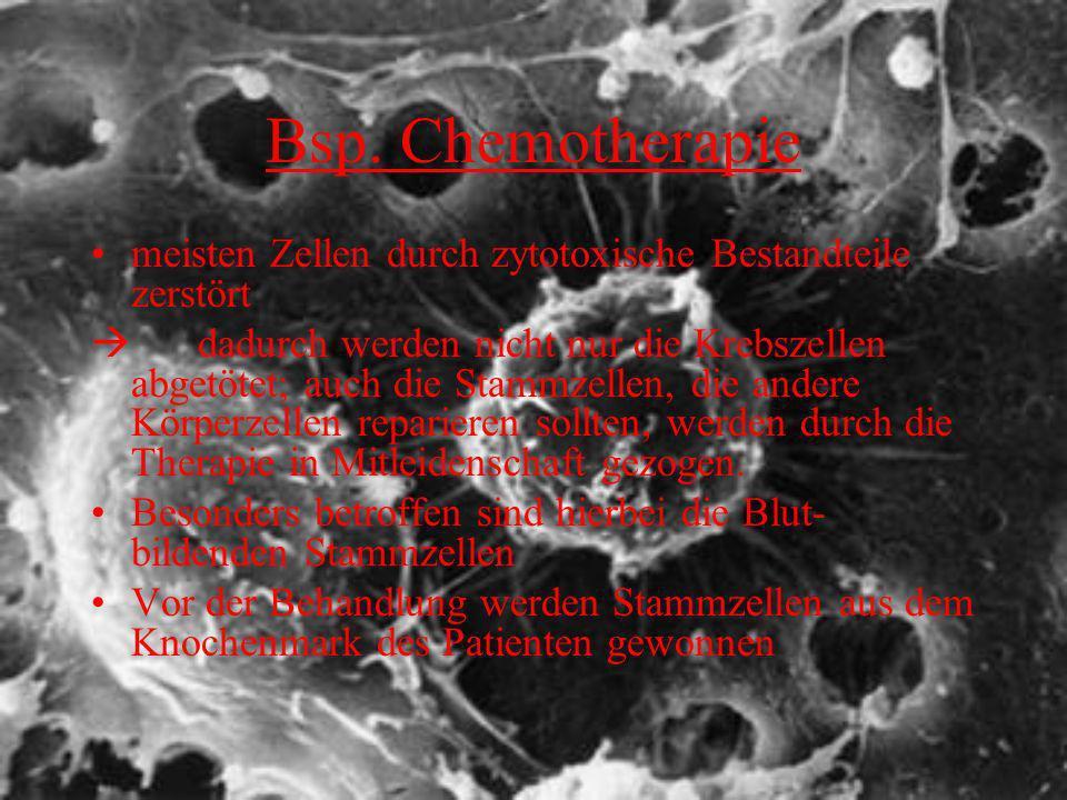 Bsp. Chemotherapie meisten Zellen durch zytotoxische Bestandteile zerstört dadurch werden nicht nur die Krebszellen abgetötet; auch die Stammzellen, d