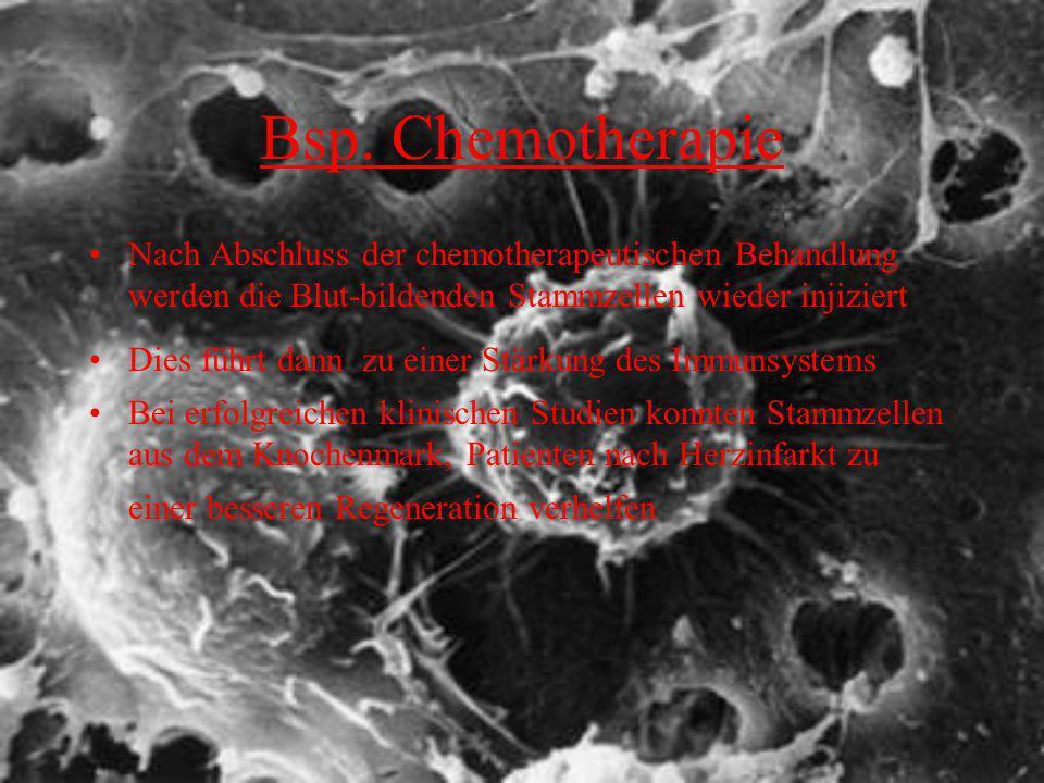Bsp. Chemotherapie Nach Abschluss der chemotherapeutischen Behandlung werden die Blut-bildenden Stammzellen wieder injiziert Dies führt dann zu einer