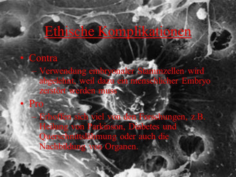 Ethische Komplikationen Contra –Verwendung embryonaler Stammzellen wird abgelehnt, weil dazu ein menschlicher Embryo zerstört werden muss Pro –Erhoffe