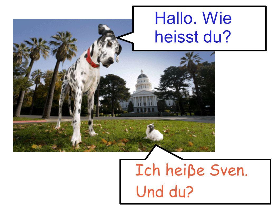 Hallo. Wie heisst du? Ich heiβe Sven. Und du?