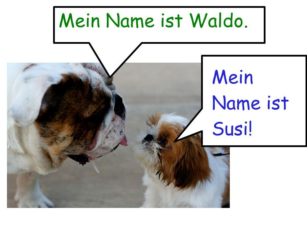 Mein Name ist Waldo. Mein Name ist Susi!