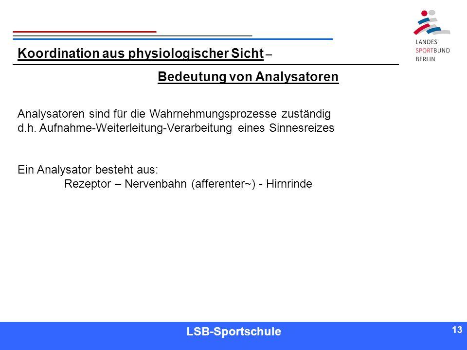 13 Referent LSB-Sportschule 13 Koordination aus physiologischer Sicht – Bedeutung von Analysatoren Analysatoren sind für die Wahrnehmungsprozesse zust