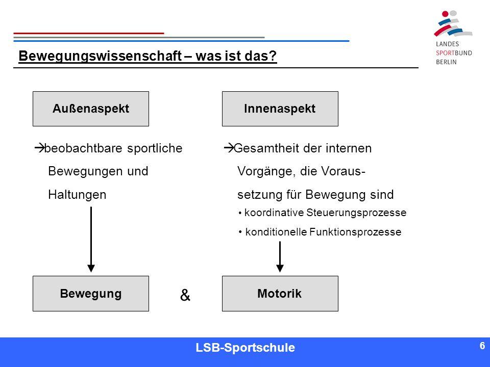 6 6 Referent LSB-Sportschule 6 Bewegungswissenschaft – was ist das? AußenaspektInnenaspekt BewegungMotorik & beobachtbare sportliche Bewegungen und Ha