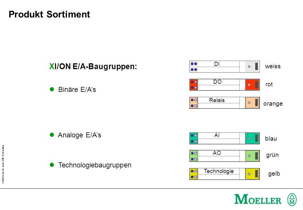 Schutzvermerk nach DIN 34 beachten XI/ON E/A-Baugruppen: l Binäre E/As l Analoge E/As l Technologiebaugruppen DI DO Relais AO AI Technologie weiss rot