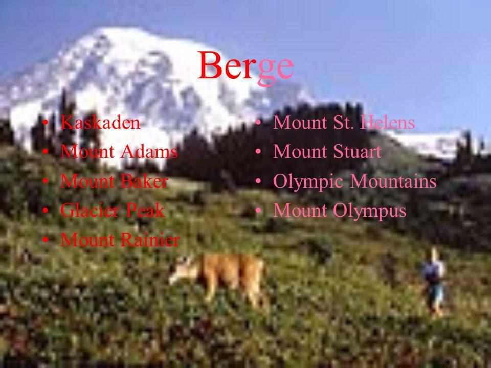Berge Kaskaden Mount Adams Mount Baker Glacier Peak Mount Rainier Mount St. Helens Mount Stuart Olympic Mountains Mount Olympus