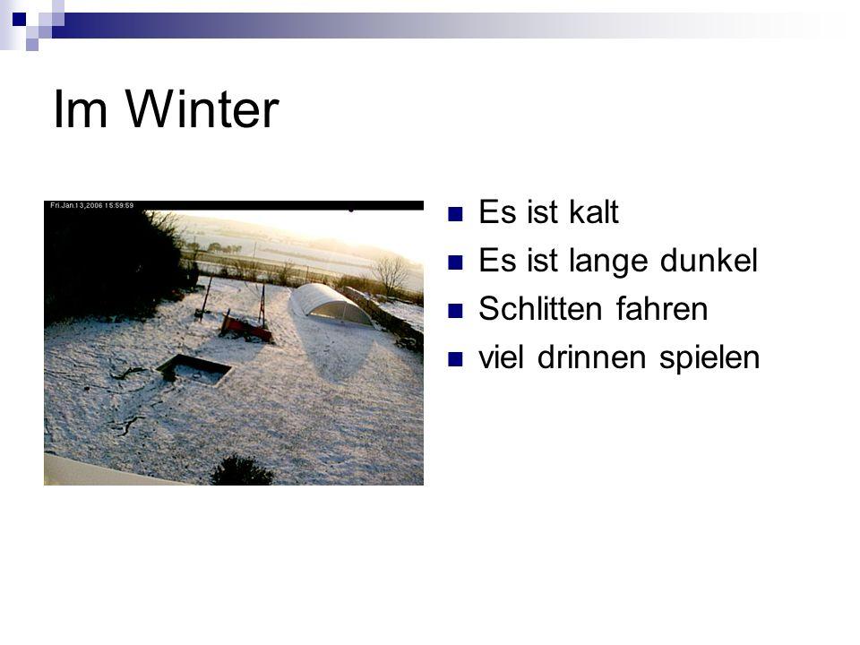 Im Winter Es ist kalt Es ist lange dunkel Schlitten fahren viel drinnen spielen