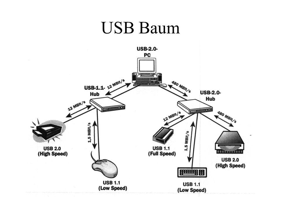 USB Baum