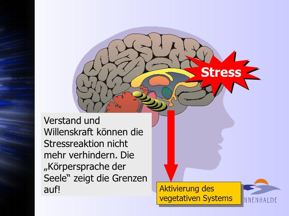 1. Informations-Overload 2. Gefühlslabilisierung (Alarm!) 3. Speicherblockade 4. Kontroll-Versagen 3 Limbisches System Hippocampus 2 Stirnhirn Thalamu