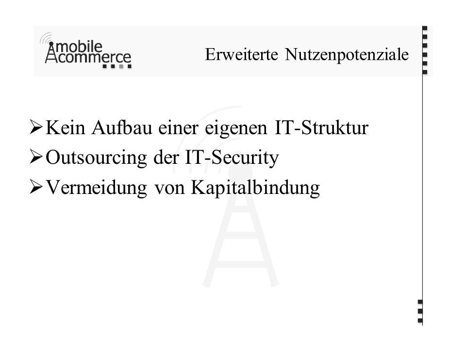 Erweiterte Nutzenpotenziale Kein Aufbau einer eigenen IT-Struktur Outsourcing der IT-Security Vermeidung von Kapitalbindung
