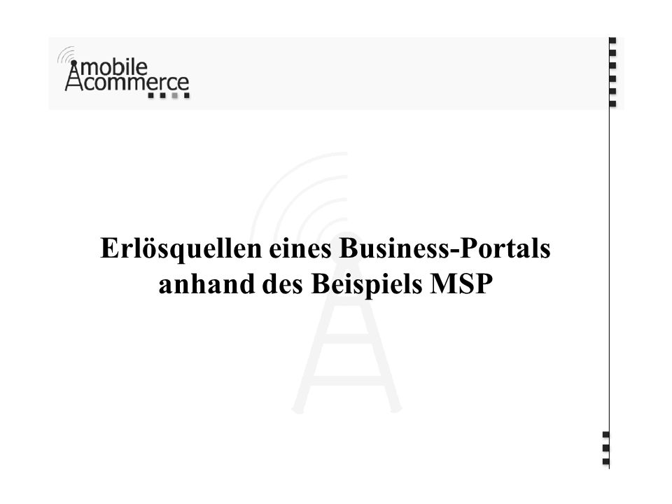 Erlösquellen eines Business-Portals anhand des Beispiels MSP