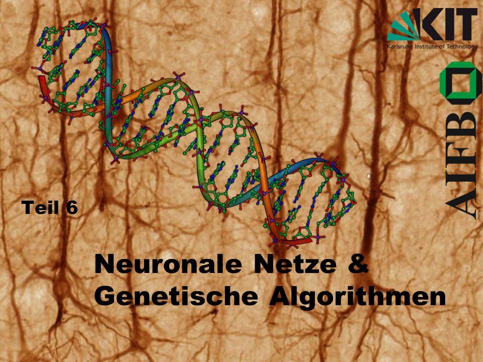 Teil 6 Neuronale Netze & Genetische Algorithmen