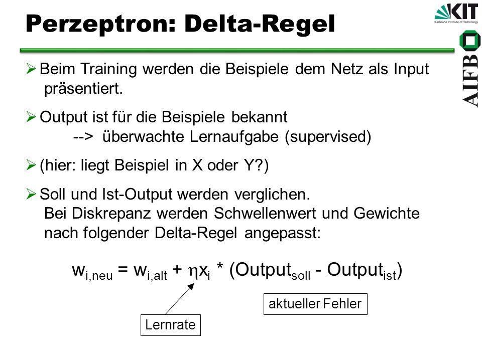 Beim Training werden die Beispiele dem Netz als Input präsentiert. Output ist für die Beispiele bekannt --> überwachte Lernaufgabe (supervised) (hier: