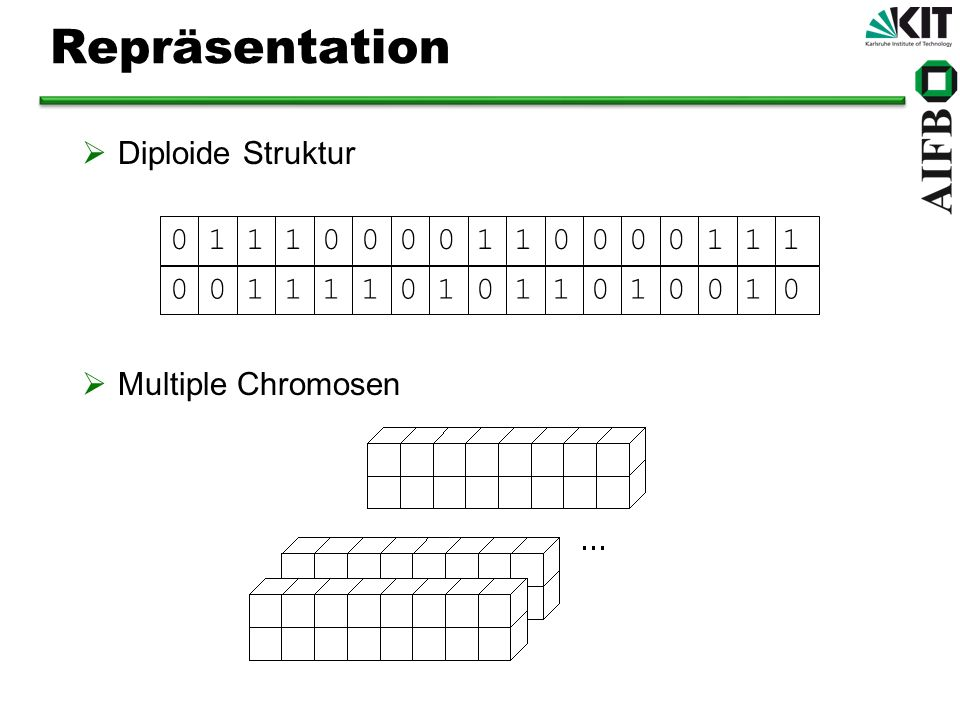 Repräsentation Diploide Struktur Multiple Chromosen 0 1 1 1 0 0 0 0 1 1 0 0 0 0 1 1 10 0 1 1 1 1 0 1 0 1 1 0 1 0 0 1 0