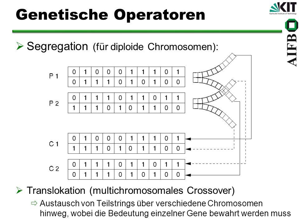 Genetische Operatoren Segregation (für diploide Chromosomen): Translokation (multichromosomales Crossover) Austausch von Teilstrings über verschiedene Chromosomen hinweg, wobei die Bedeutung einzelner Gene bewahrt werden muss