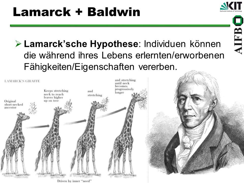 Lamarck + Baldwin Lamarcksche Hypothese: Individuen können die während ihres Lebens erlernten/erworbenen Fähigkeiten/Eigenschaften vererben.