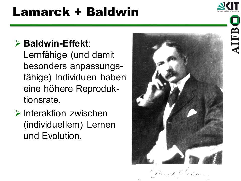 Lamarck + Baldwin Baldwin-Effekt: Lernfähige (und damit besonders anpassungs- fähige) Individuen haben eine höhere Reproduk- tionsrate. Interaktion zw