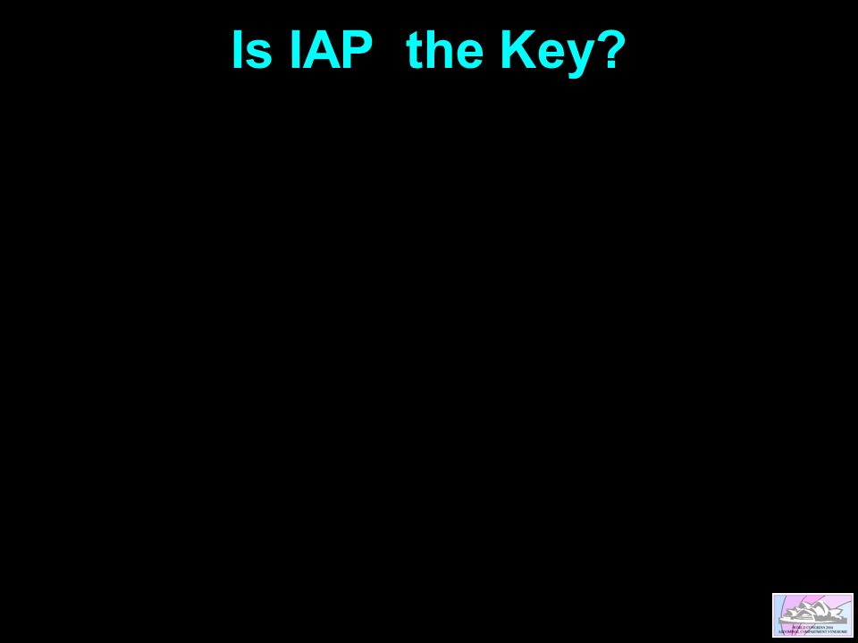 Is IAP the Key?