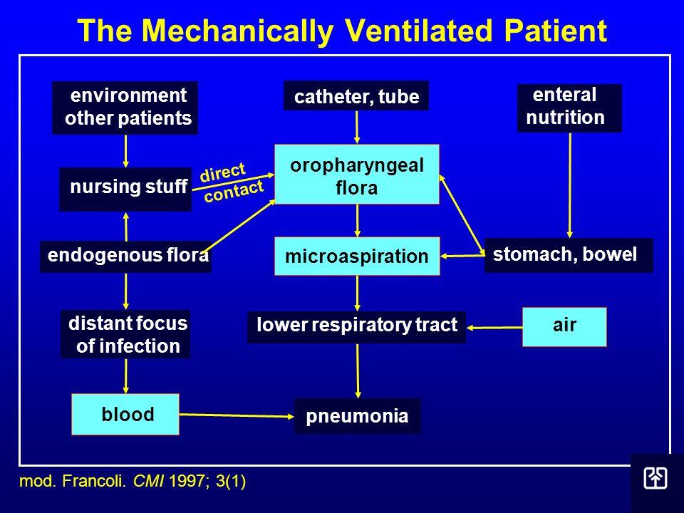 The Mechanically Ventilated Patient mod. Francoli. CMI 1997; 3(1) environment other patients nursing stuff endogenous flora distant focus of infection