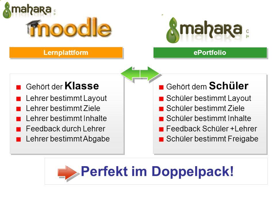 E-Portfolio Spirale Wolf Hilzensauer 2007. Die 5 ePortfolio Prozesse.