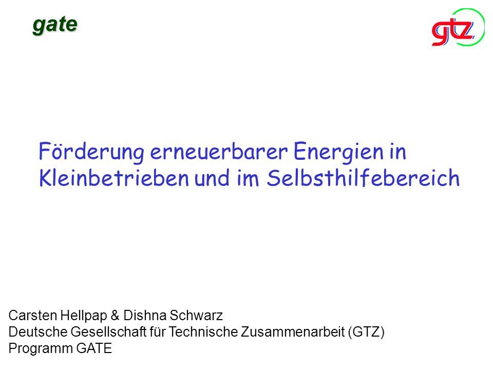 Förderung erneuerbarer Energien in Kleinbetrieben und im Selbsthilfebereich Carsten Hellpap & Dishna Schwarz Deutsche Gesellschaft für Technische Zusa