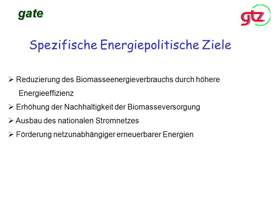 Spezifische Energiepolitische Ziele Ausbau des nationalen Stromnetzes Förderung netzunabhängiger erneuerbarer Energien gate Reduzierung des Biomasseen