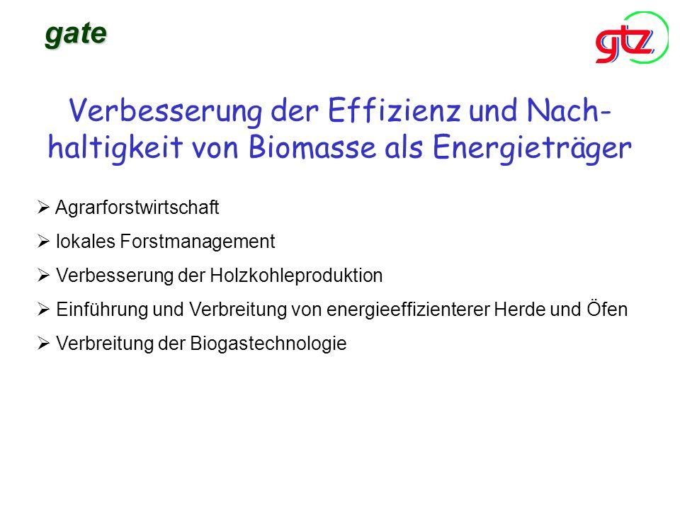 Verbesserung der Effizienz und Nach- haltigkeit von Biomasse als Energieträger gate Agrarforstwirtschaft lokales Forstmanagement Verbesserung der Holz