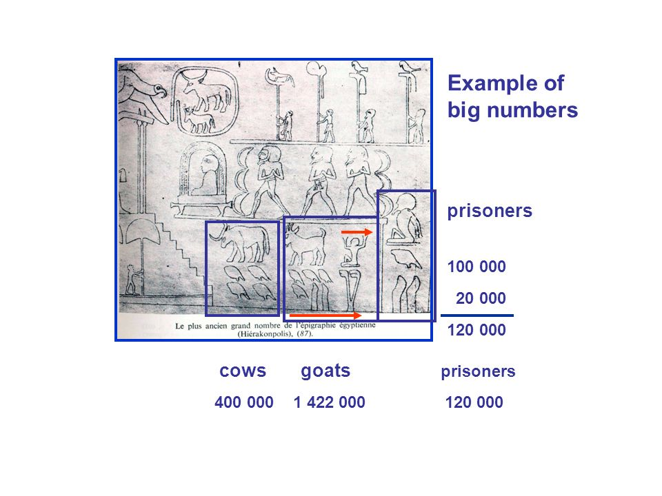 cows goats prisoners 400 000 1 422 000 120 000 prisoners 100 000 20 000 120 000 Example of big numbers