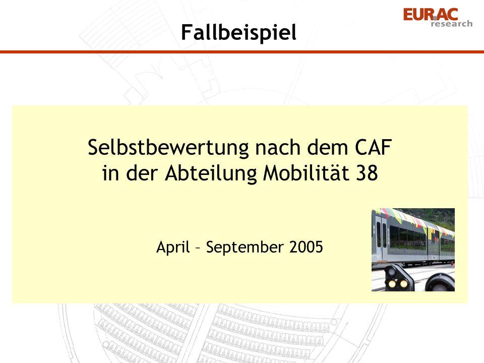 Fallbeispiel Selbstbewertung nach dem CAF in der Abteilung Mobilität 38 April – September 2005