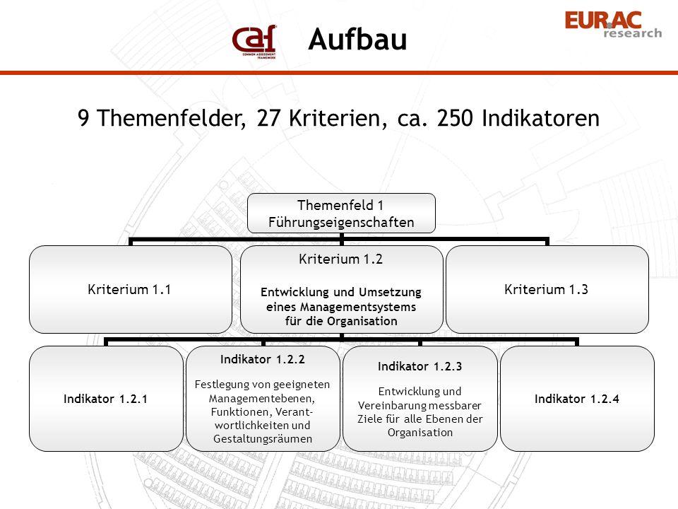 Themenfeld 1 Führungseigenschaften Kriterium 1.1 Kriterium 1.2 Entwicklung und Umsetzung eines Managementsystems für die Organisation Indikator 1.2.1