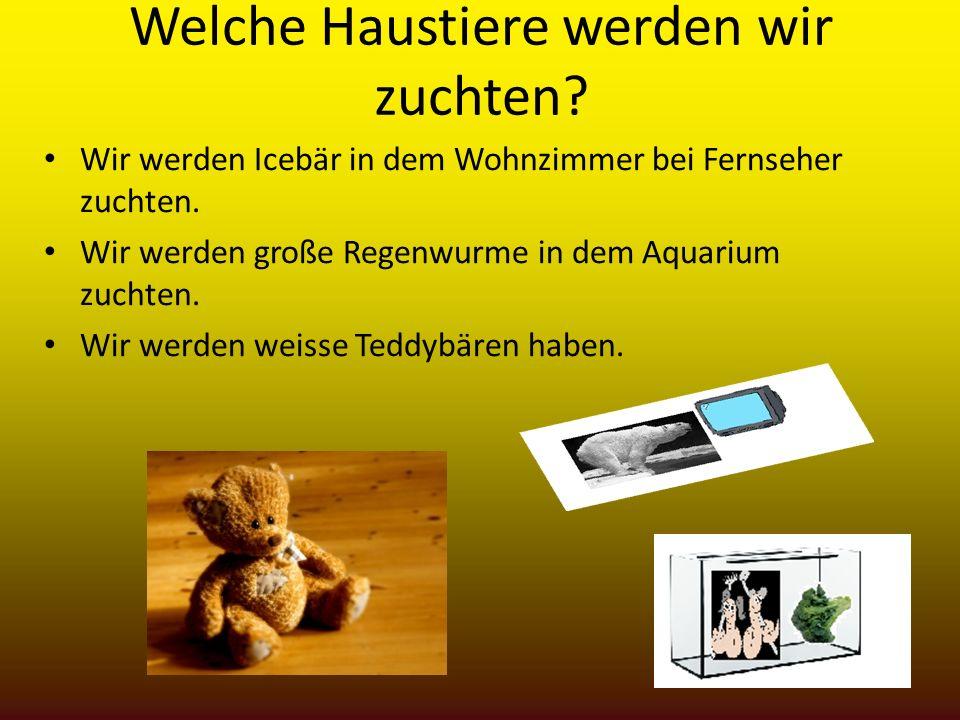 Welche Haustiere werden wir zuchten? Wir werden Icebär in dem Wohnzimmer bei Fernseher zuchten. Wir werden große Regenwurme in dem Aquarium zuchten. W
