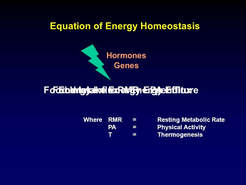 Interleukin-6 : Renin-Angiotensin-System / Aldosteron-secreting Factor Steroid Metabolism PAI-1 Leptin Energy Homeostasis Food Intake Angiogenesis Haemopoesis Sexual Maturation Osteogenesis Immune System Inflammation Energy Homeostasis Adiponectin Atherosklerosis Energy Homeostasis Insulin Sensitivity Blood Pressure Salt-/Water Balance Cortisol Metabolism Sexual Hormone Balance Haemostasis Atherosklerosis