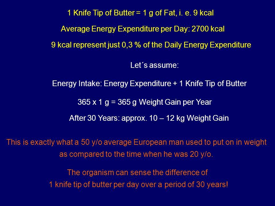 Funktionen des Fettgewebes Insulinsensitivität Energiespeicherung Adrenerge Sensitivität Energieabgabe (Lipolyse, Thermogenese) Hormonsekretion Energiehomöostase, Entzündung, Gerinnung, Atherosklerose