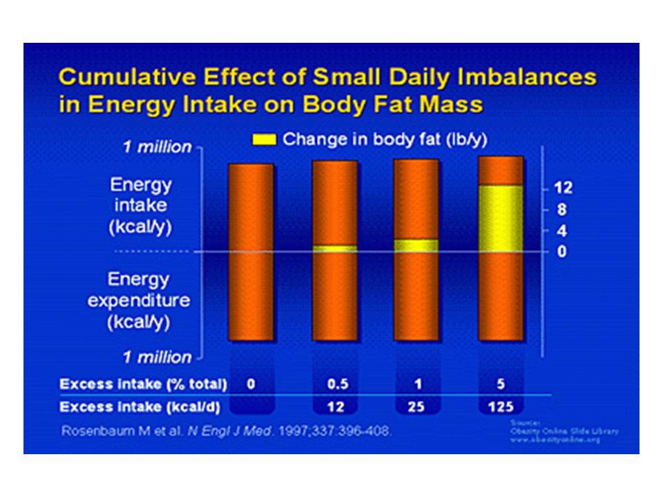 Grundkomponenten der Energiehomöostase-Gleichung Brennwerte, Diät-Zusammensetzung von Hauptnährstoffen Regelelemente der Energiehomöostase Fettzellfunktionen Sie sollten nach der heutigen Vorlesung Fragen zu folgenden Themen beantworten können: