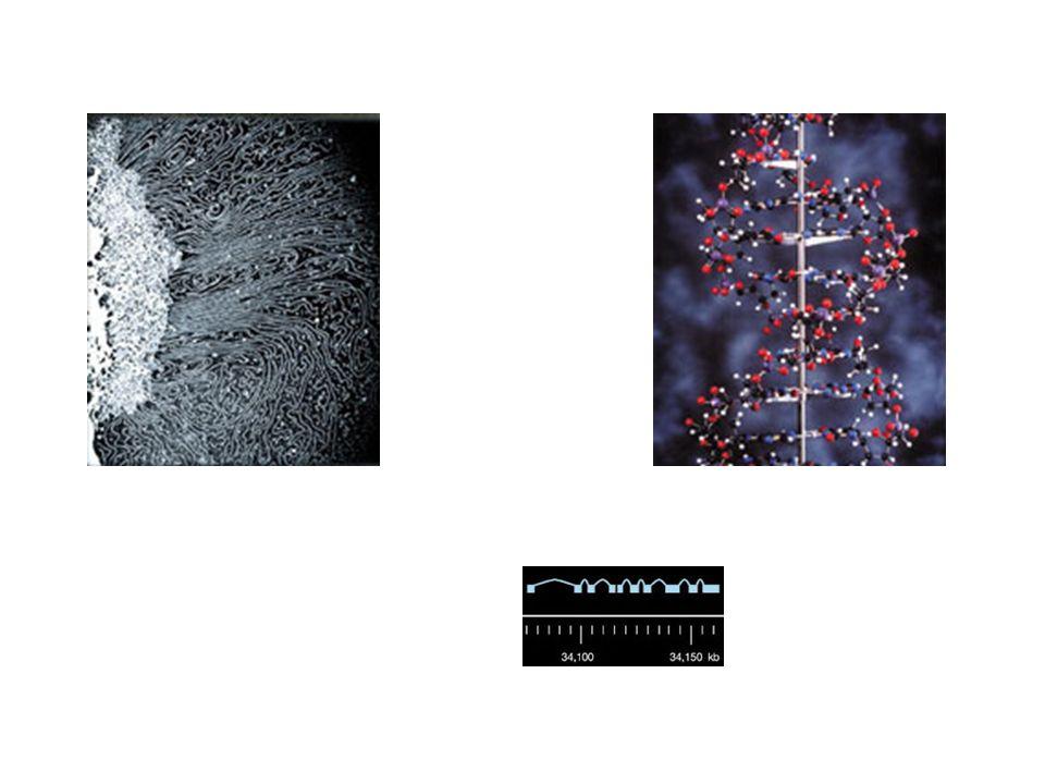 7.These Narrative und symbolische Muster bestimmen die Wahrnehmung.
