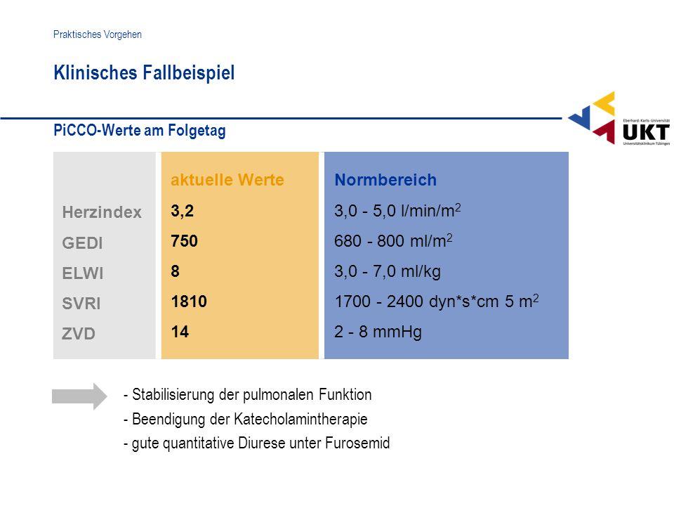PiCCO-Werte am Folgetag Klinisches Fallbeispiel Praktisches Vorgehen aktuelle Werte 3,2 750 8 1810 14 Normbereich 3,0 - 5,0 l/min/m 2 680 - 800 ml/m 2