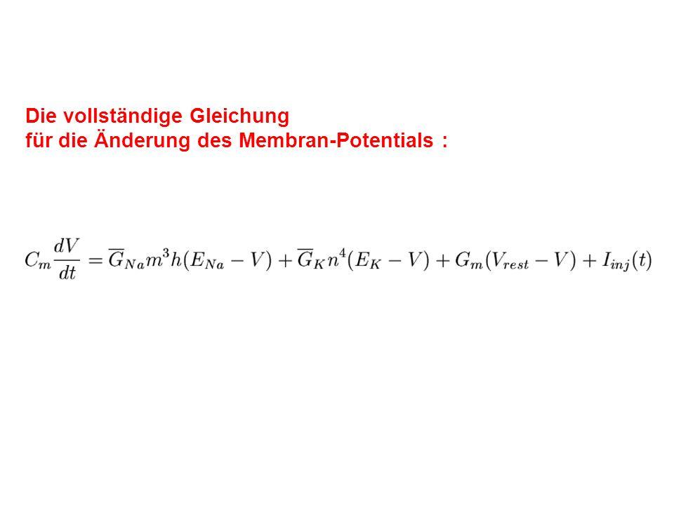 Die vollständige Gleichung für die Änderung des Membran-Potentials :