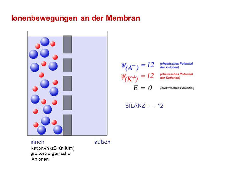 Cm: Kapazität der Zellmembran GNa, GK: spannungsabhängige Leitwerte der Kanäle ENa, Ek: Gleichgewichtspotential von Na bzw.