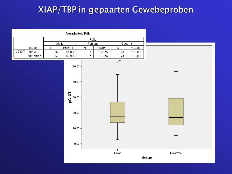 XIAP/TBP in gepaarten Gewebeproben