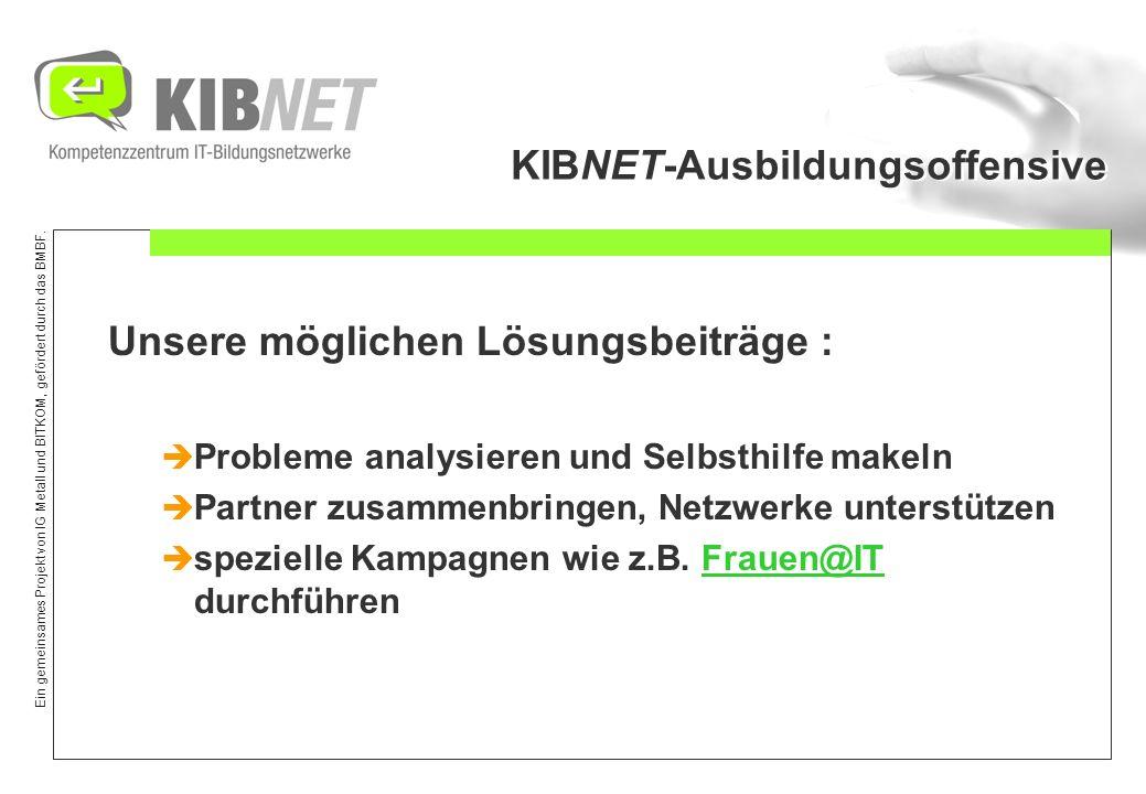 Ein gemeinsames Projekt von IG Metall und BITKOM, gefördert durch das BMBF. KIBNET-Ausbildungsoffensive Unsere möglichen Lösungsbeiträge : Probleme an