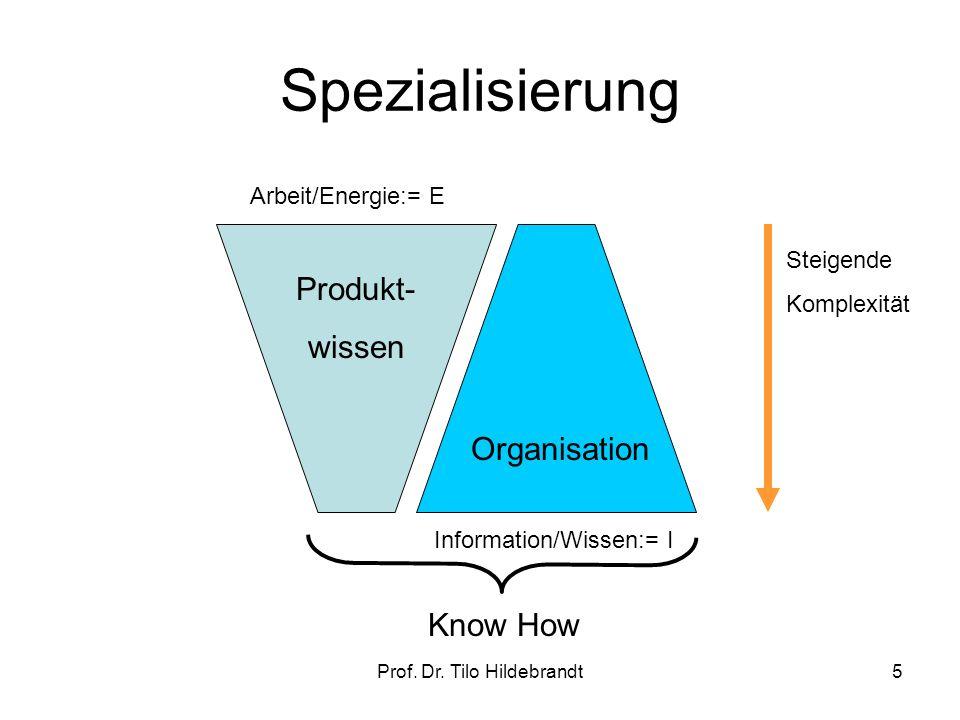 Spezialisierung Prof. Dr. Tilo Hildebrandt5 Produkt- wissen Organisation Know How Steigende Komplexität Arbeit/Energie:= E Information/Wissen:= I