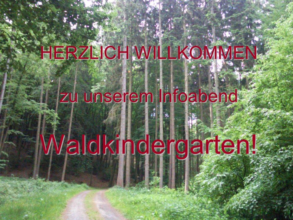 HERZLICH WILLKOMMEN zu unserem Infoabend Waldkindergarten!
