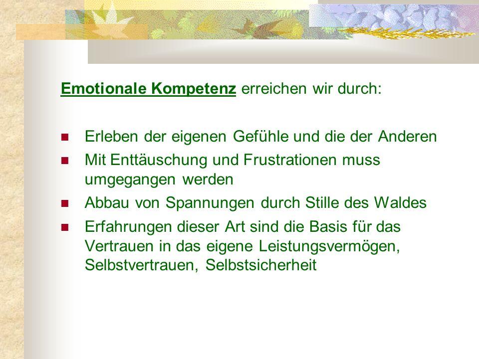 Emotionale Kompetenz erreichen wir durch: Erleben der eigenen Gefühle und die der Anderen Mit Enttäuschung und Frustrationen muss umgegangen werden Ab