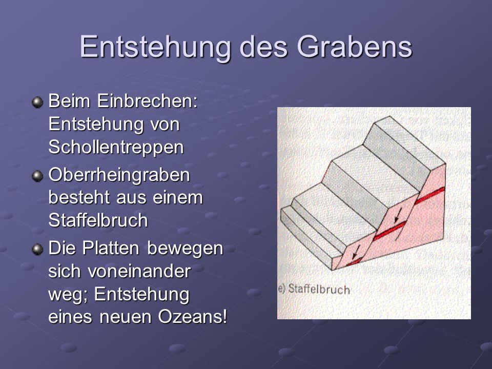Entstehung des Grabens Beim Einbrechen: Entstehung von Schollentreppen Oberrheingraben besteht aus einem Staffelbruch Die Platten bewegen sich voneinander weg; Entstehung eines neuen Ozeans!