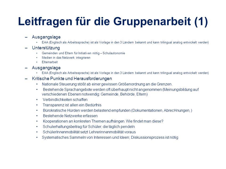 Leitfragen für die Gruppenarbeit (2) Nächste Schritte –Gestartete Projekte/Initiativen zusammenführen (auch auf politischer Ebene) –Regelmäßige Treffen (ev.