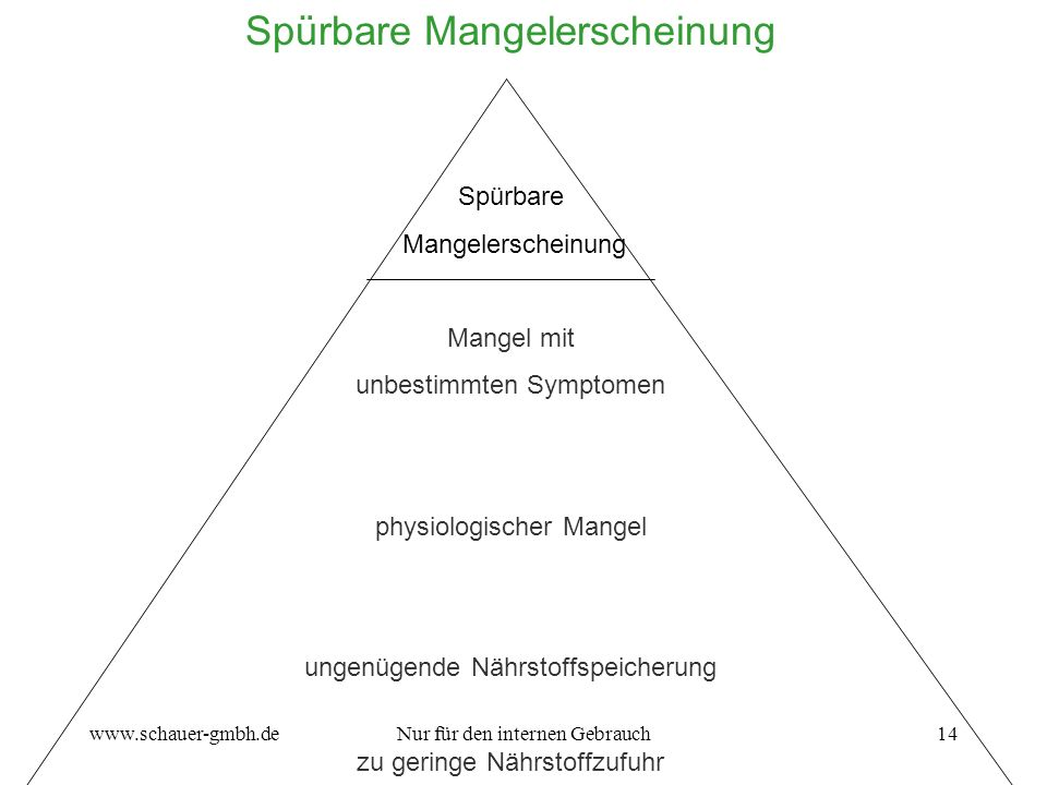 www.schauer-gmbh.deNur für den internen Gebrauch14 Spürbare Mangelerscheinung Spürbare Mangelerscheinung Mangel mit unbestimmten Symptomen physiologis