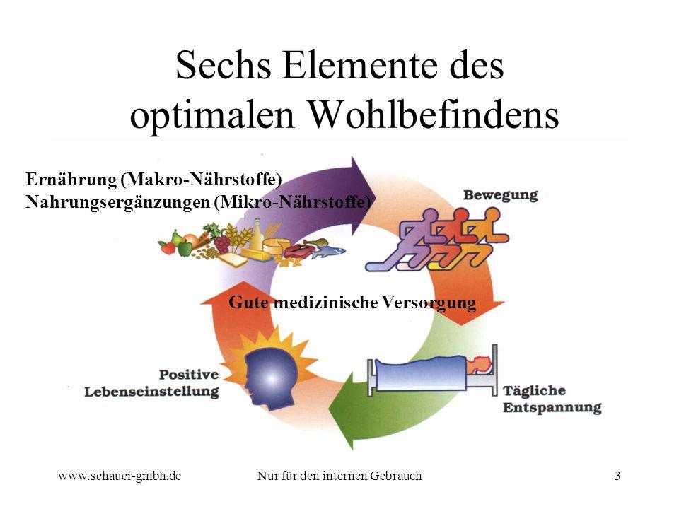 www.schauer-gmbh.deNur für den internen Gebrauch3 Sechs Elemente des optimalen Wohlbefindens Gute medizinische Versorgung Ernährung (Makro-Nährstoffe)