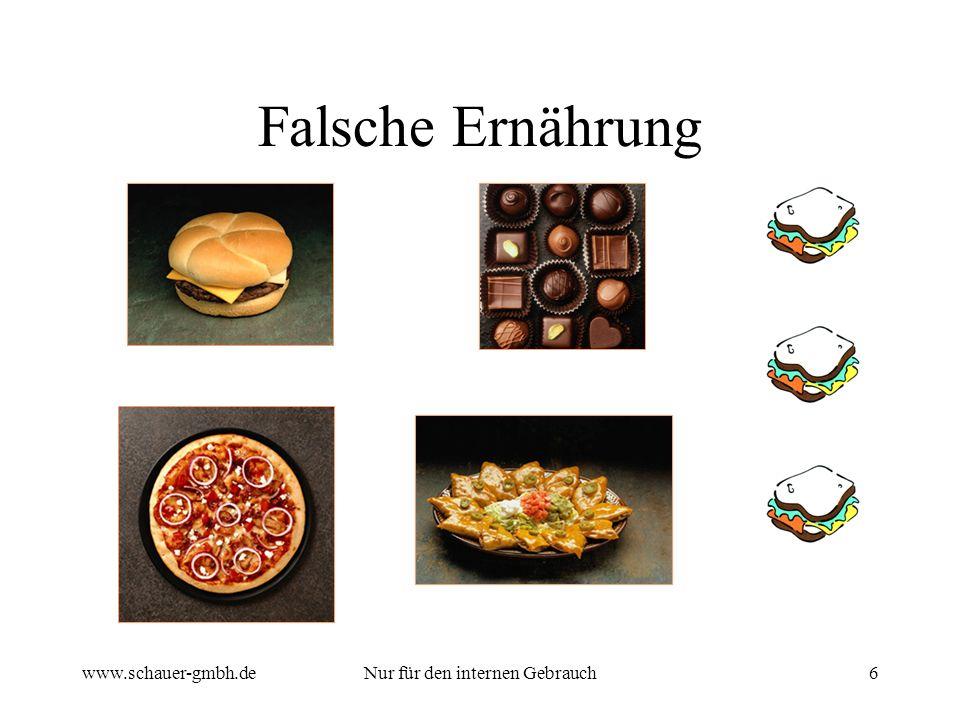 www.schauer-gmbh.deNur für den internen Gebrauch6 Falsche Ernährung