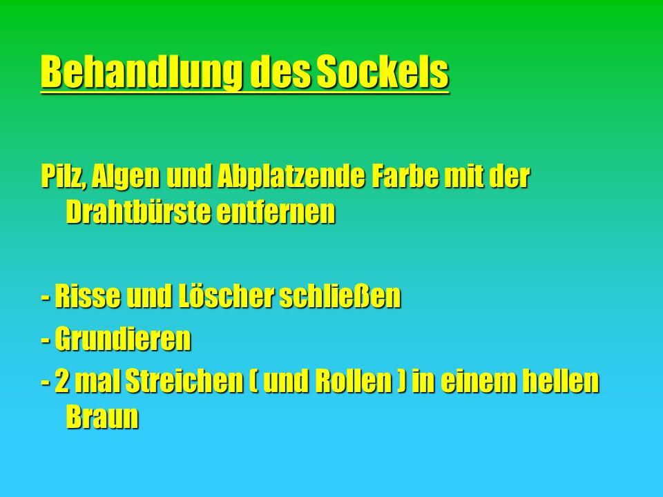 Behandlung des Sockels Pilz, Algen und Abplatzende Farbe mit der Drahtbürste entfernen - Risse und Löscher schließen - Grundieren - 2 mal Streichen (