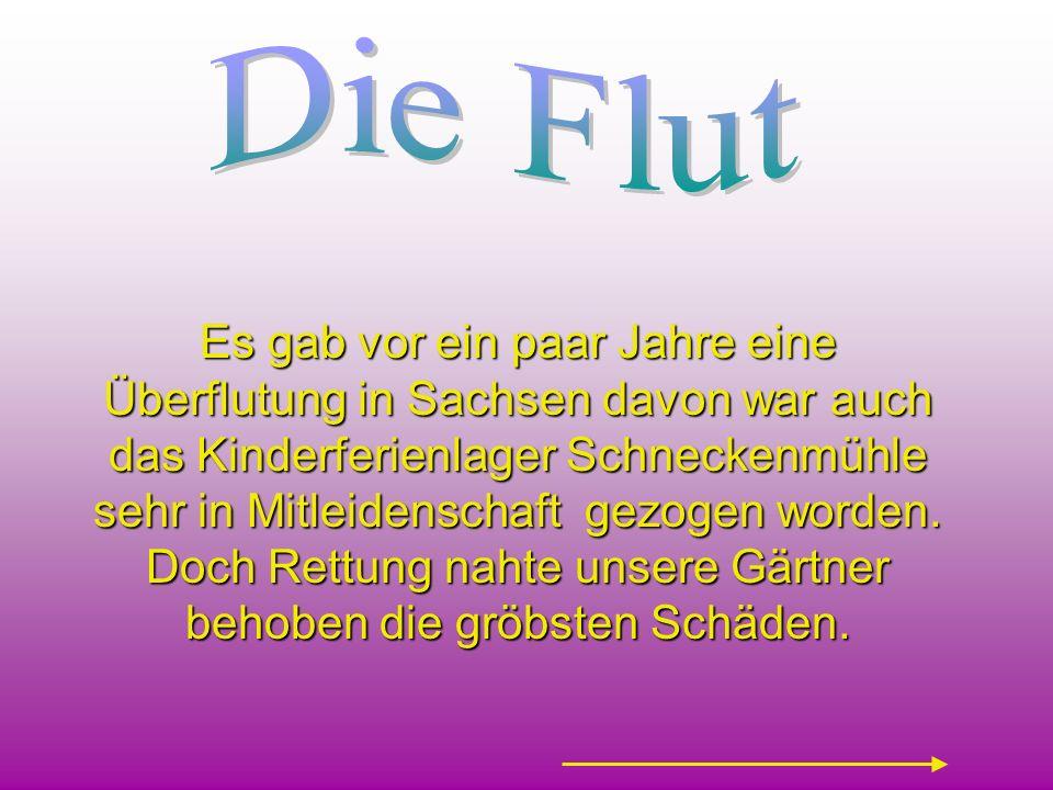 Es gab vor ein paar Jahre eine Überflutung in Sachsen davon war auch das Kinderferienlager Schneckenmühle sehr in Mitleidenschaft gezogen worden. Doch