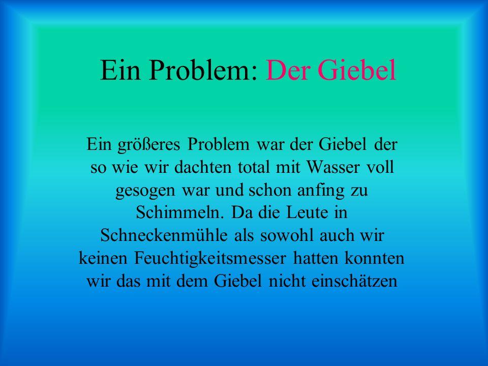 Ein Problem: Der Giebel Ein größeres Problem war der Giebel der so wie wir dachten total mit Wasser voll gesogen war und schon anfing zu Schimmeln. Da